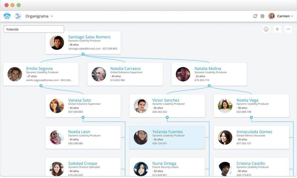 software de organigramas y base de datos para recursos humanos